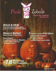 Pink Zebra Home Fall and Winter Catalog